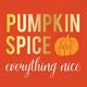 Pumpkin Spice Paper Cocktail Napkins, Set of 20