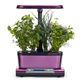 AeroGarden Harvest Elite WiFi with Gourmet Herbs Seed Pod Kit