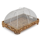 Water Hyacinth Food Dome and Tray