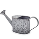 Decorative Galvanized Watering Can