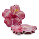 Tropical Hibiscus Melamine Plates, Set of 4