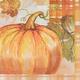 Harvest Pumpkin Lunch Napkins, Set of 20