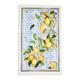 Castello Citrus Kitchen Towel, 28
