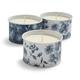 Citronella Sea Salt Scented Candles, Set of 3
