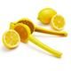 Sur La Table® Lemon Juicer