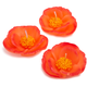 Orange Poppy Candles, Set of 3