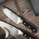 Zwilling J.A. Henckels Pro Hollow-Edge Chef's Knife, 6