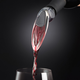 OXO® Wine Aerator & Pourer