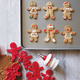 Tovolo Gingerbread People Cookie Cutter & Stamp Set