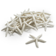 Decorative Starfish Scatter