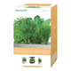 AeroGarden Space Saver 6 Elite Poultry & Seafood Herb Seed Kit