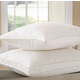 Downright Sierra Medium Pillow