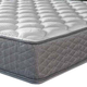 Twin Serta Perfect Sleeper Hotel Concierge Suite II Plush Double Sided Mattress