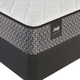 Sealy Response Essentials Townhouse IV Cushion Firm Twin Size Mattress