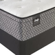 Sealy Response Essentials Townhouse IV Plush Euro Top Twin Size Mattress