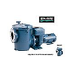 Sta-Rite CSP Series 7.5HP Nema Single Phase Cast Iron Pool Pump Without Strainer | 230V | CSPHK-142
