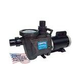 Waterway Champion 56-Frame 1HP Standard Efficiency Maximum Rated Pool Pump 115/230V   CHAMPS-110