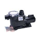 Waterway SVL56 High Flow 56-Frame 3HP Energy Efficient Full Rated Pool Pump 230V | SVL56E-130
