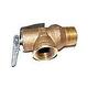 Raypak Pressure Relief Valve 125 PSI | 008091F