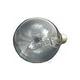 Pentair Floodlamp Medium Base | 400W 120V | 79102200