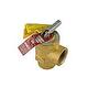 Pentair MasterTemp Pressure Relief Valve   50PSI   473715Z