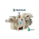 Pentair SuperFlo VS Energy Efficient Variable Speed Pool Pump | 1.5HP Single Phase 115-230V 50-60HZ | 342001