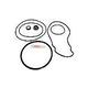 Seal & Gasket Kit for Pentair WhisperFloXF & IntelliFlowXF Pool Pumps   GO-KIT32 APCK1027