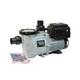 Waterway Power Defender 165 Dual Voltage Variable Speed Pump 1.65HP 115/230V | PD-165