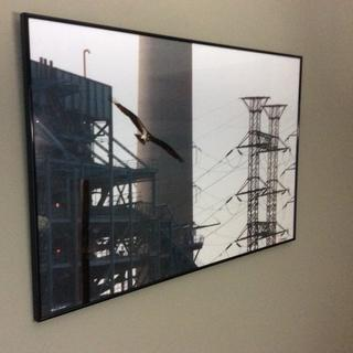 24x36 photo looks even better with this frame and easy to assemble