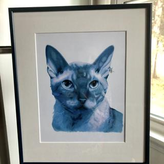 Blue frame for my blue kitty!