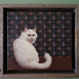 Turkish Angora print on canvas