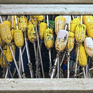 Fishing Buoys - Montauk Pt. LI NY