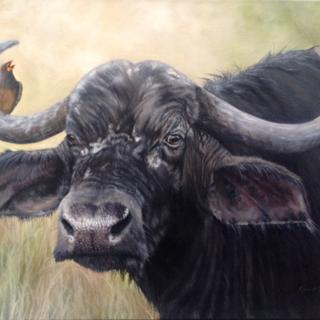 Oxpecker, by Karen Young 16x20 oils