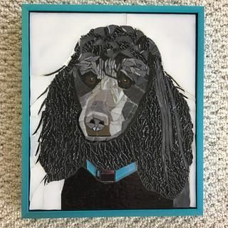 Mosaic of Houdini, a Standard Poodle.