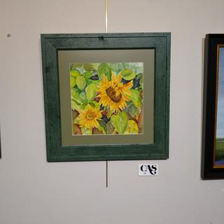 Sunspot Sunflowers