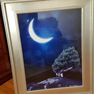 Fairy Moon & Tree in Silver Frame