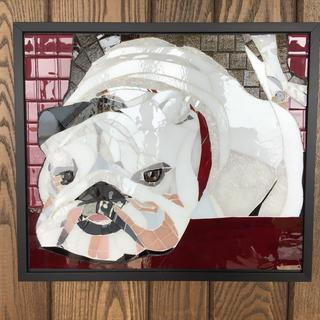 Willy, the bulldog.