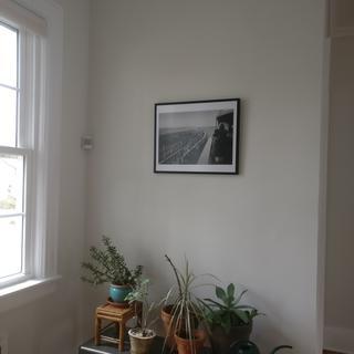 nice frame!