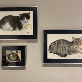 The perfect frame for my cat drawings! To decorate the cats' room.