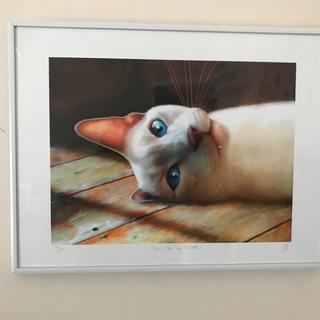 111WHT White Frame on sale