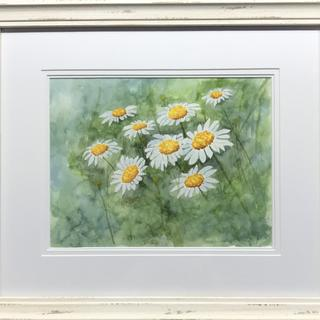 'Swaying Daisies' 13.5x16 watercolor