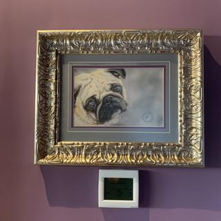 Painting of Jake. I am a pet portrait artist   Your frames are my favorite