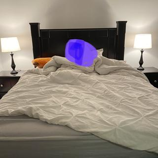 Our 4 year still coming-sleeps with us! Purple blob is him :) He loves the lamps too!