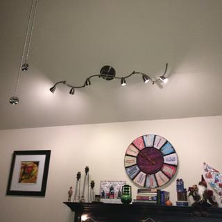 ProTrack Heavy Duty Axel Track Light on vaulted ceiling.