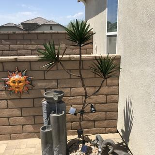 Absolutely love this water feature. It adds to our Desert oasis backyard theme. Love it!
