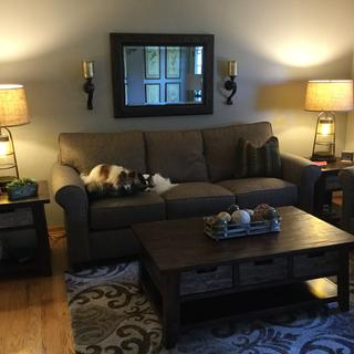 Lamps In all position as staged in my home. Papillon dogs a must accessory.