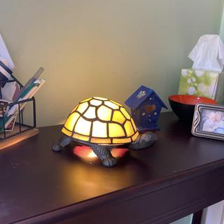 Love my turtle lamp. Only one thing I don't like it gets hot to touch .