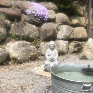 My Zen garden.