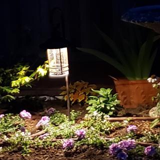 In the flower bed by the birdbath
