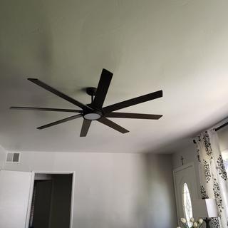 Great fan!